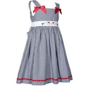 Blue Gingham Ladybug Dress