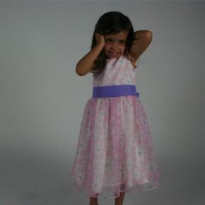Daisy Organza Dress