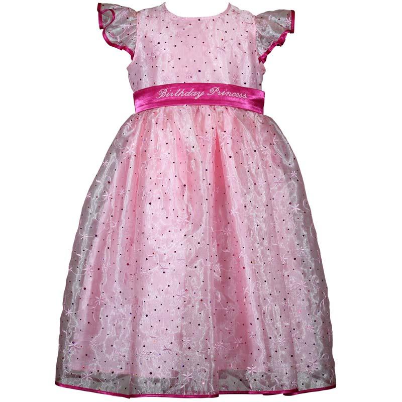 Treasure Box Kids Girls Pink Sparkle Princess Birthday Dress